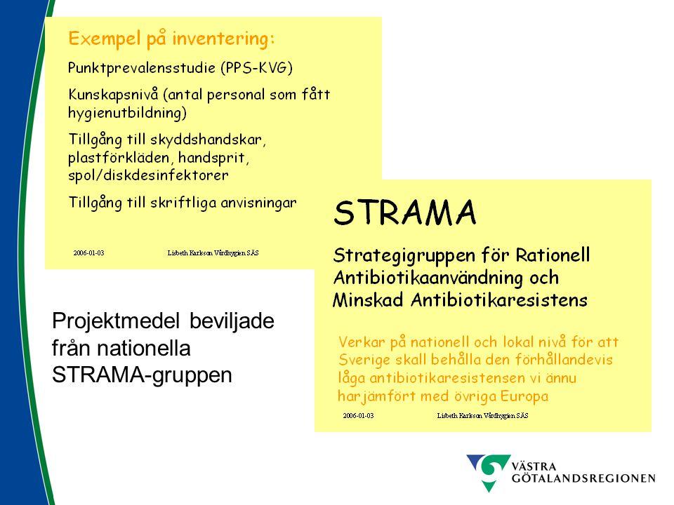 Projektmedel beviljade från nationella STRAMA-gruppen