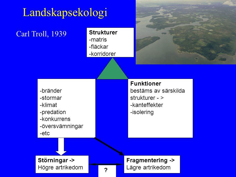 Landskapsekologi Carl Troll, 1939 Strukturer matris fläckar korridorer