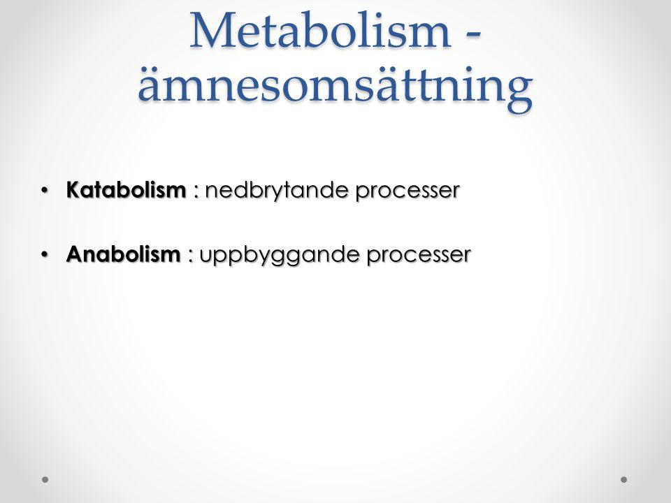 Metabolism - ämnesomsättning