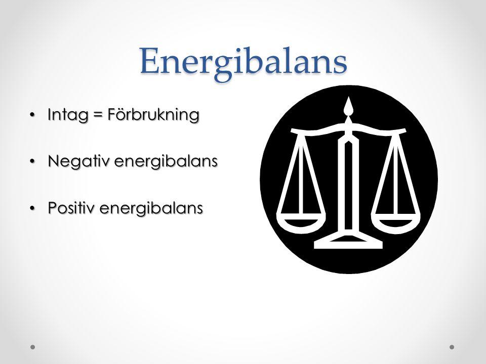 Energibalans Intag = Förbrukning Negativ energibalans