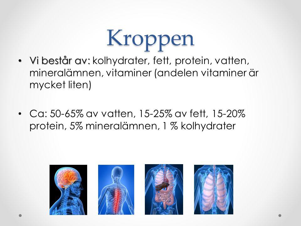 Kroppen Vi består av: kolhydrater, fett, protein, vatten, mineralämnen, vitaminer (andelen vitaminer är mycket liten)