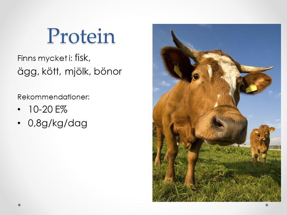 Protein ägg, kött, mjölk, bönor 10-20 E% 0,8g/kg/dag