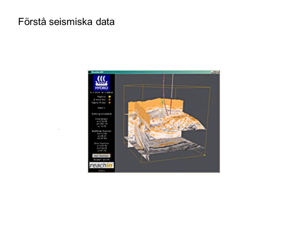 Förstå seismiska data