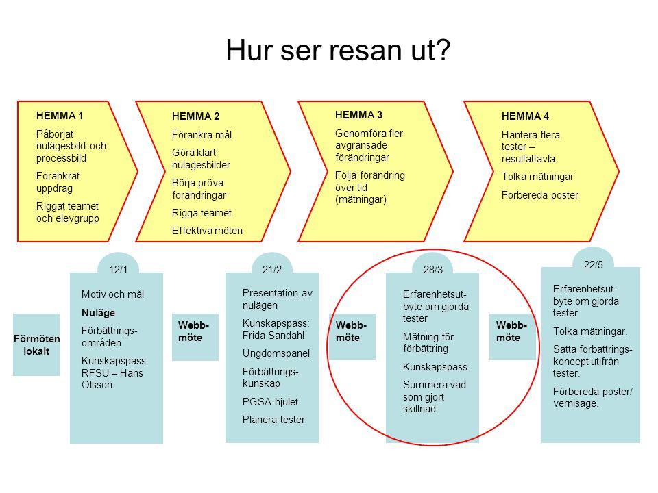 Hur ser resan ut HEMMA 1 Påbörjat nulägesbild och processbild