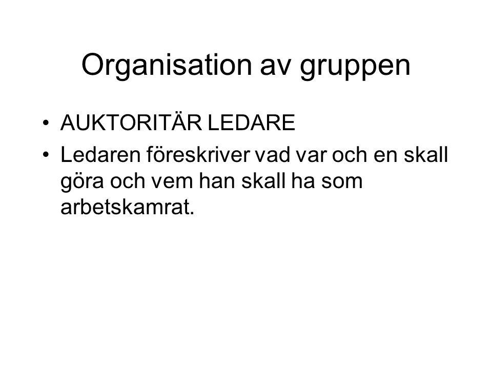 Organisation av gruppen