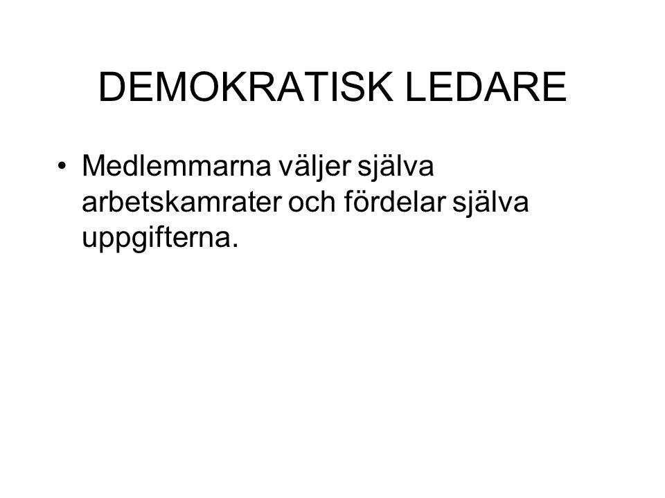 DEMOKRATISK LEDARE Medlemmarna väljer själva arbetskamrater och fördelar själva uppgifterna.