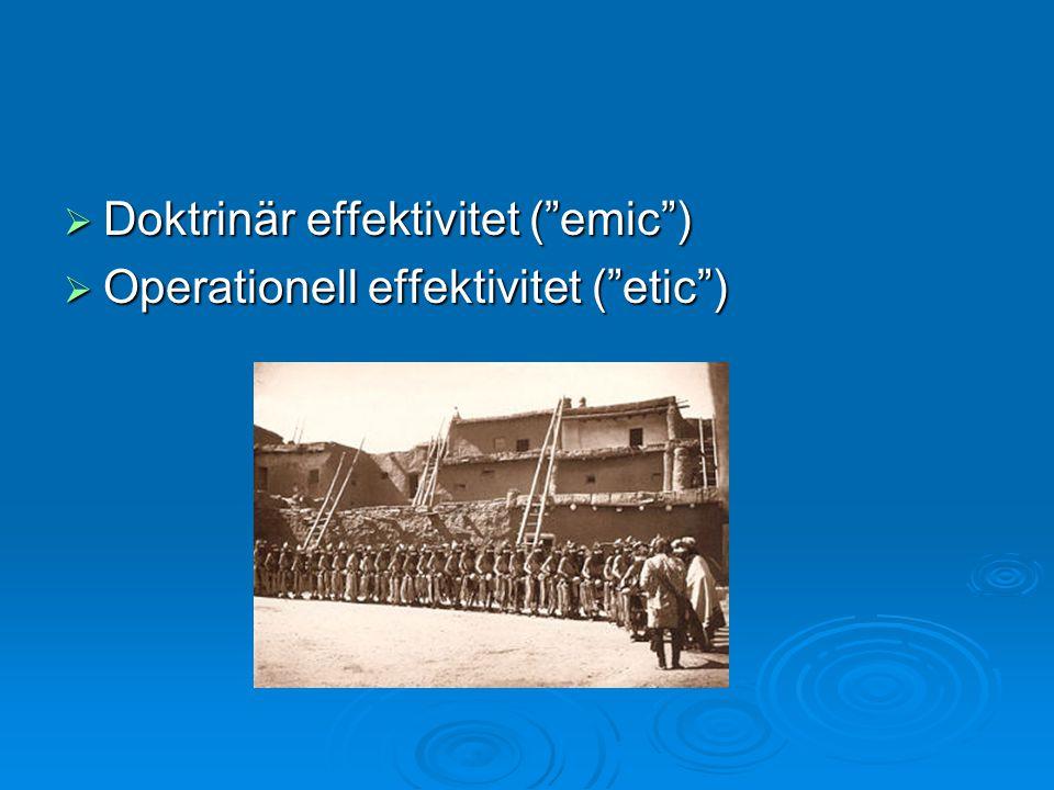 Doktrinär effektivitet ( emic )