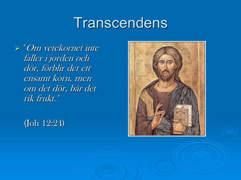 Transcendens Om vetekornet inte faller i jorden och dör, förblir det ett ensamt korn, men om det dör, bär det rik frukt.