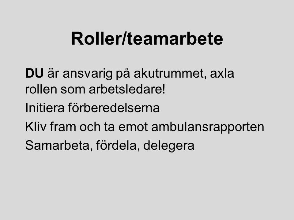Roller/teamarbete