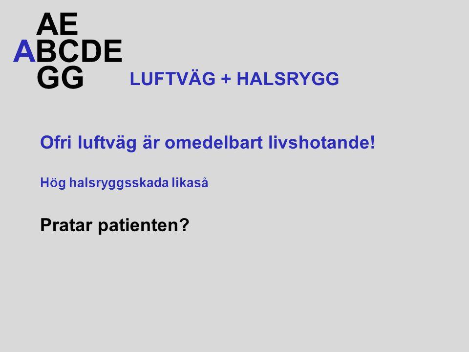 AE ABCDE GG LUFTVÄG + HALSRYGG Ofri luftväg är omedelbart livshotande!