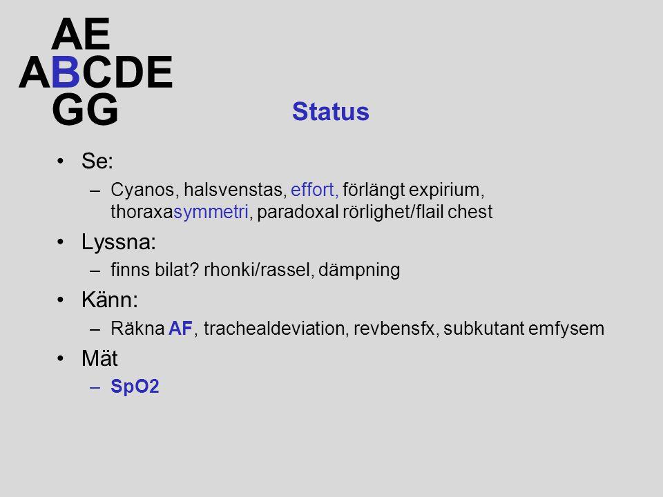AE ABCDE GG Status Se: Lyssna: Känn: Mät