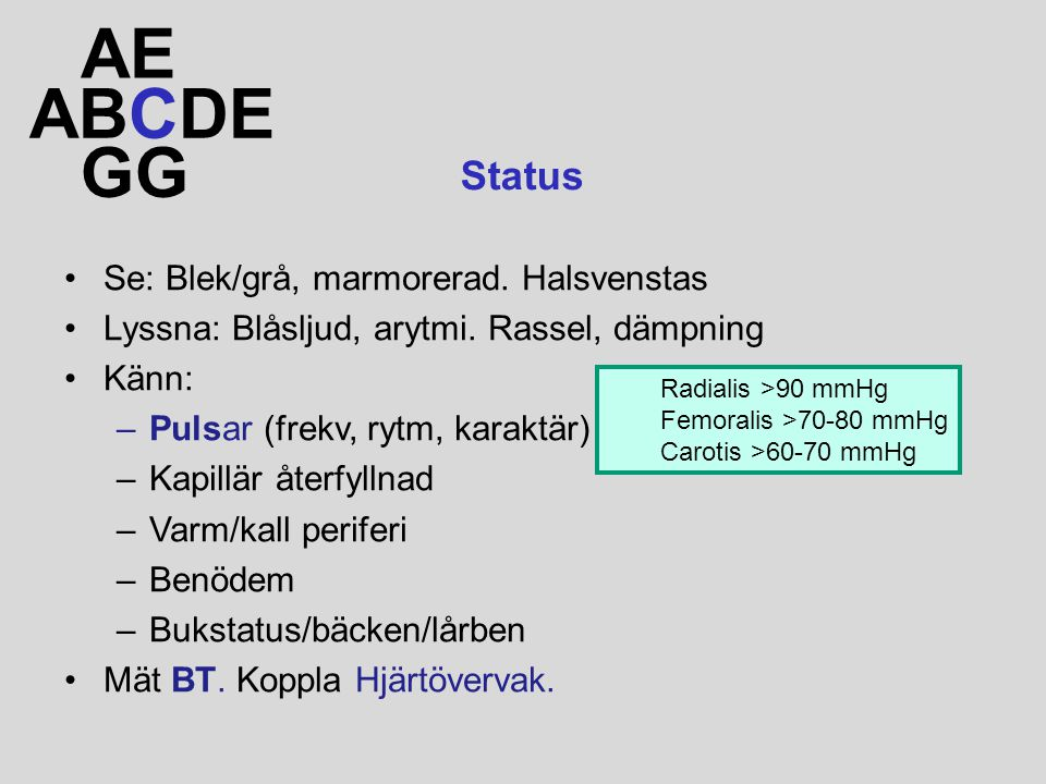 AE ABCDE GG Status Se: Blek/grå, marmorerad. Halsvenstas