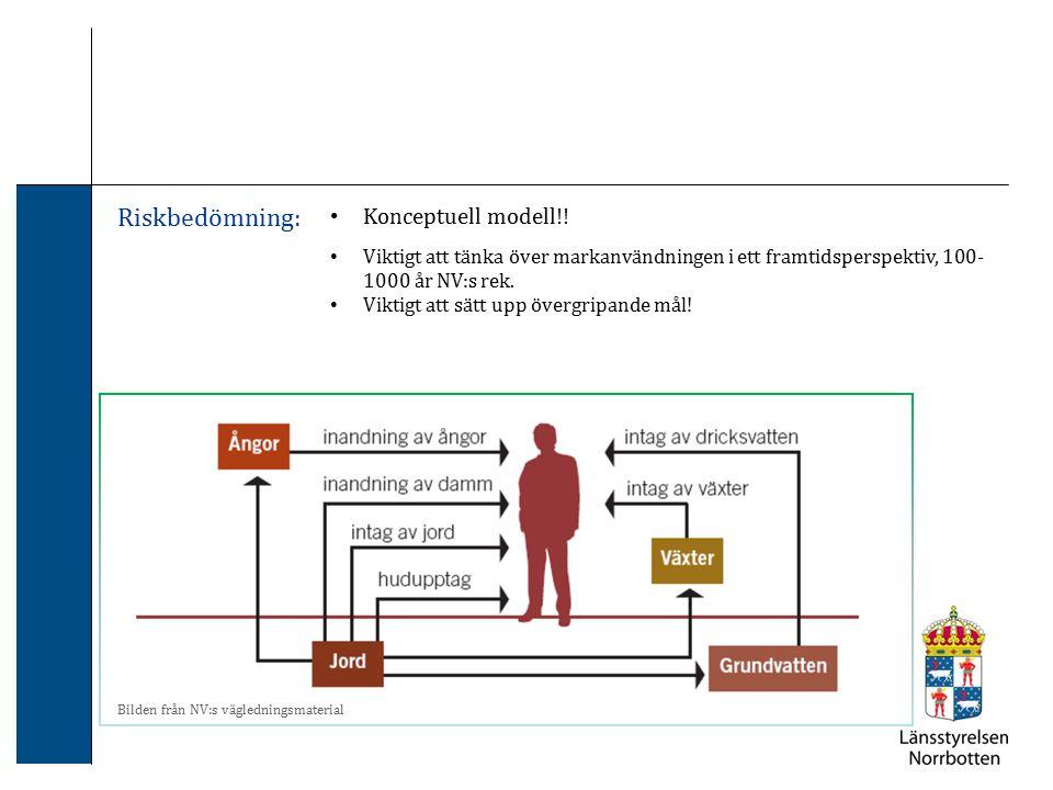 Riskbedömning: Konceptuell modell!!