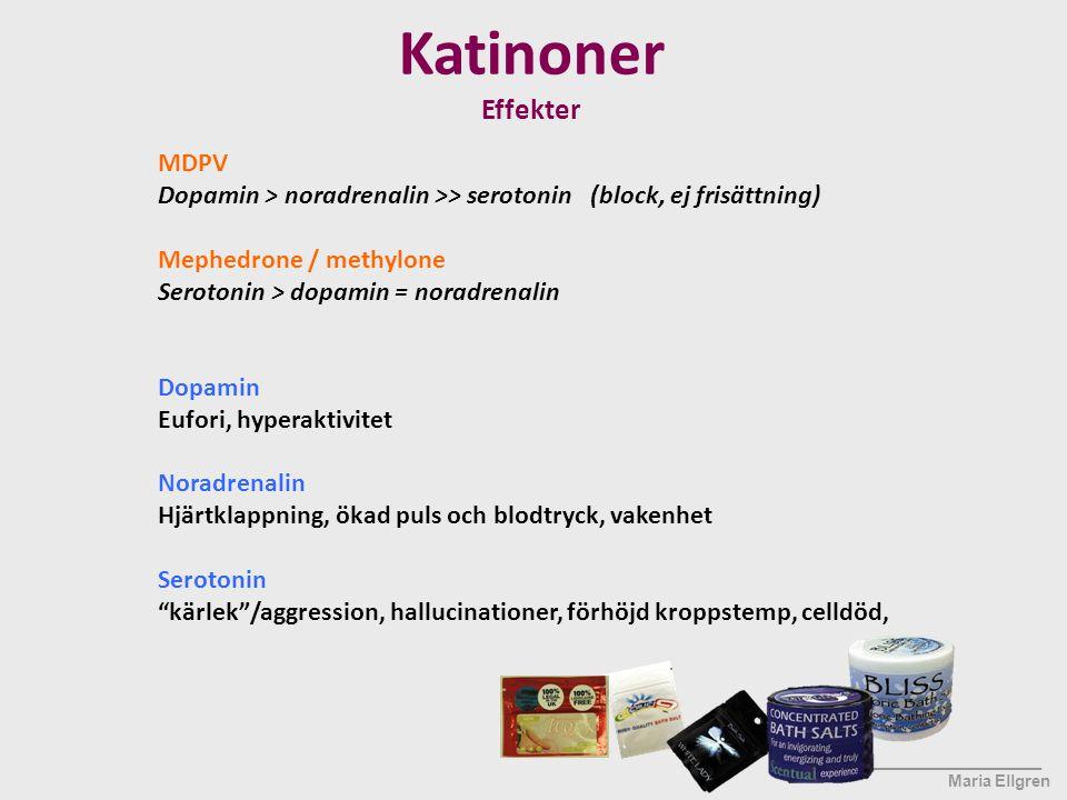 Katinoner Effekter MDPV