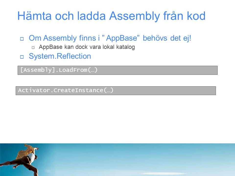 Hämta och ladda Assembly från kod