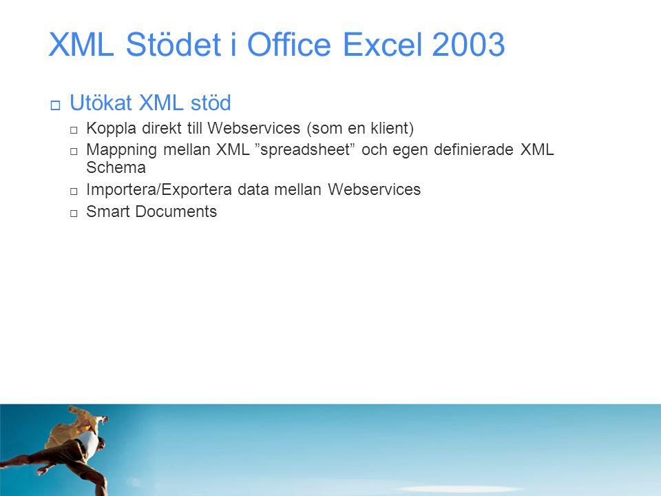 XML Stödet i Office Excel 2003