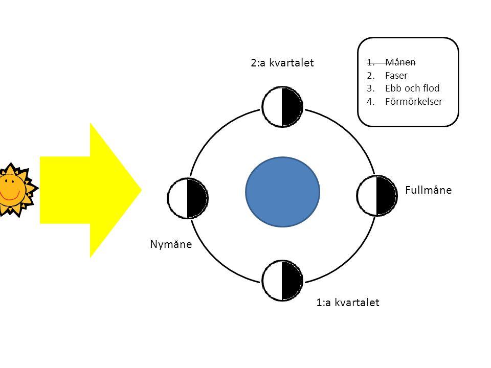 2:a kvartalet Fullmåne Nymåne 1:a kvartalet Månen Faser Ebb och flod
