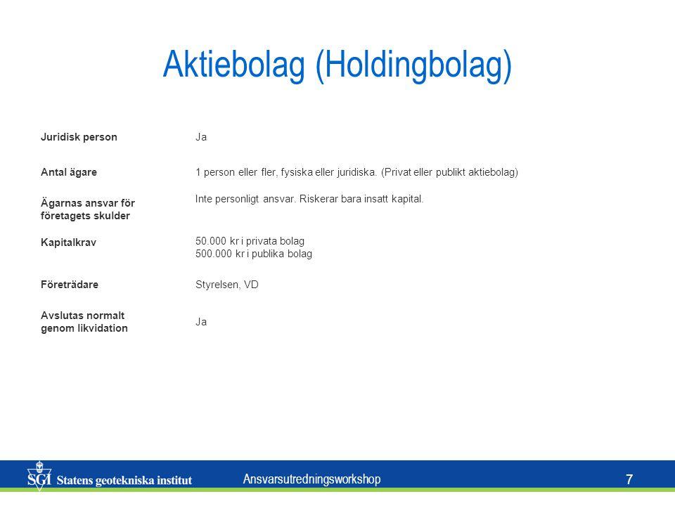 Aktiebolag (Holdingbolag)