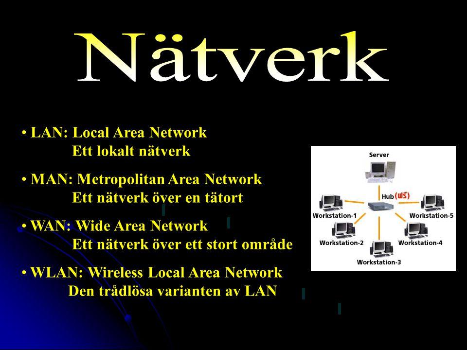 Nätverk LAN: Local Area Network Ett lokalt nätverk