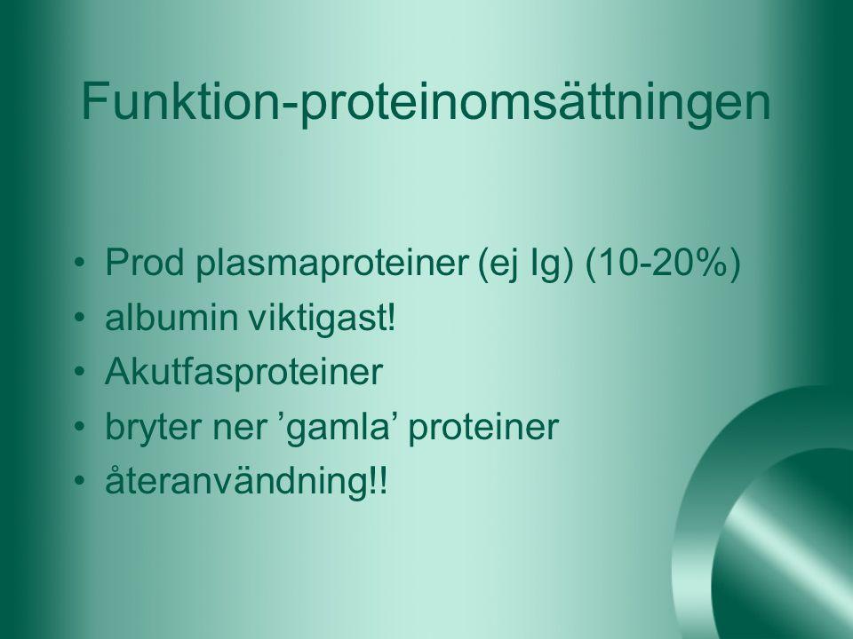 Funktion-proteinomsättningen