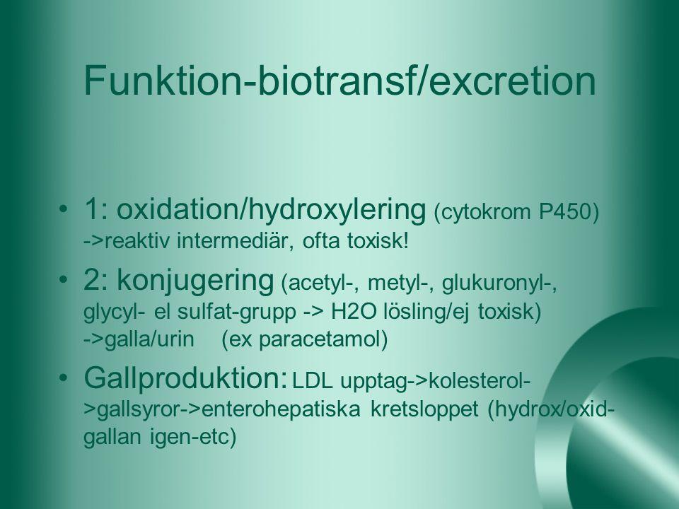 Funktion-biotransf/excretion