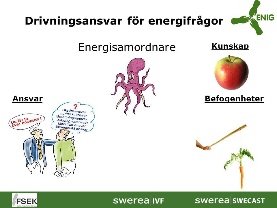 Drivningsansvar för energifrågor