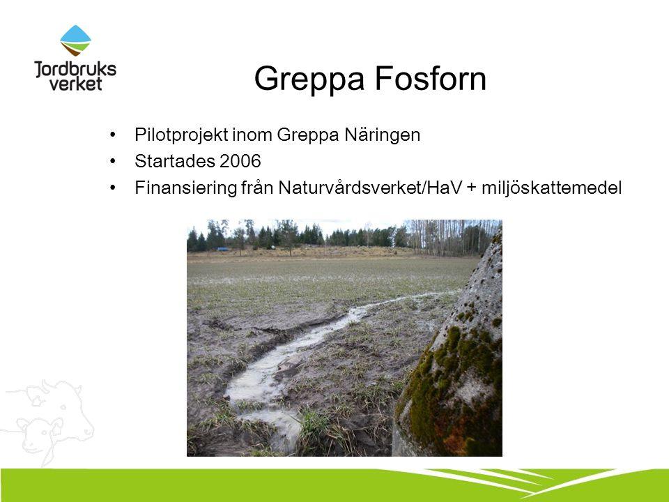 Greppa Fosforn Pilotprojekt inom Greppa Näringen Startades 2006