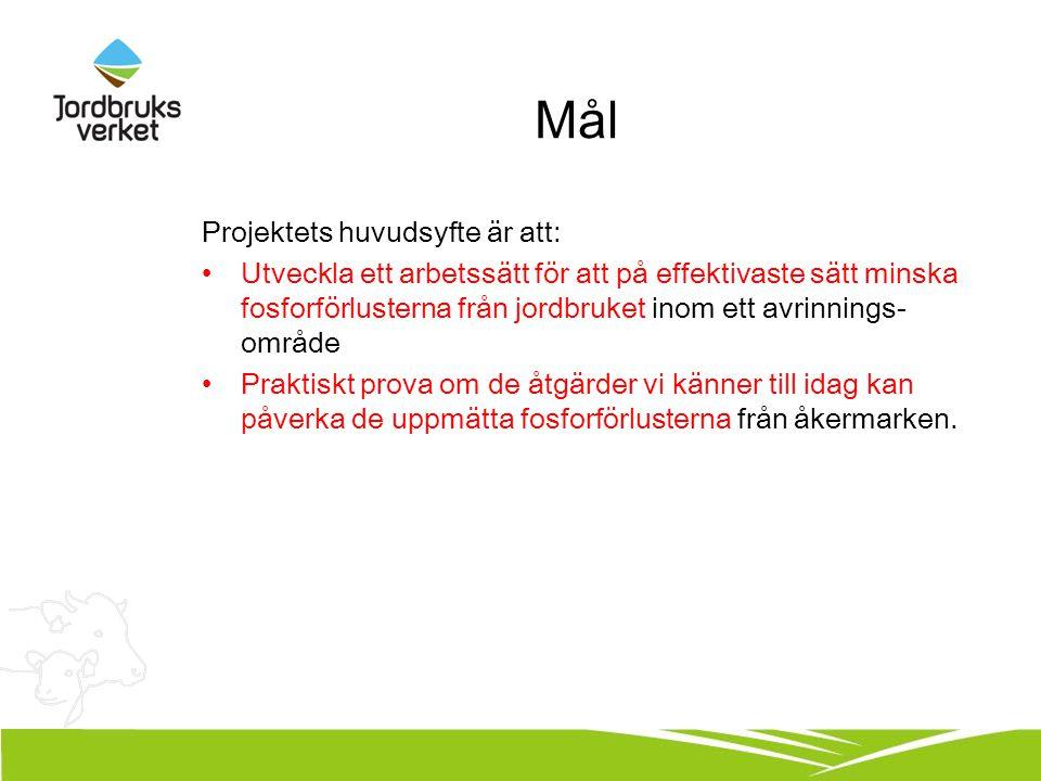 Mål Projektets huvudsyfte är att: