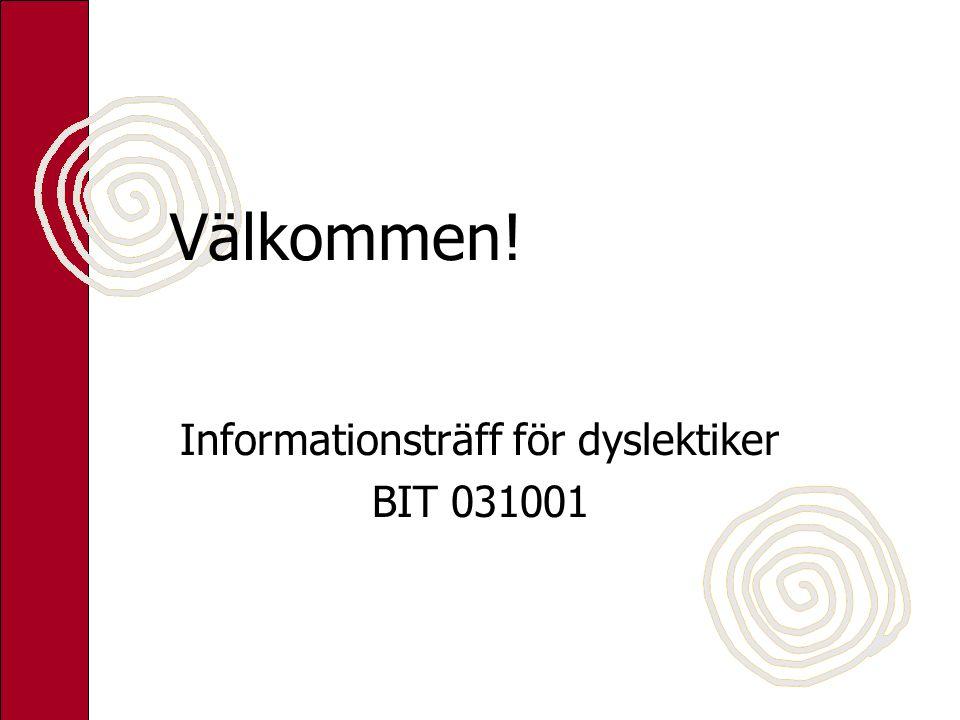 Informationsträff för dyslektiker BIT 031001
