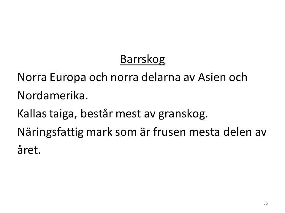 Barrskog Norra Europa och norra delarna av Asien och Nordamerika