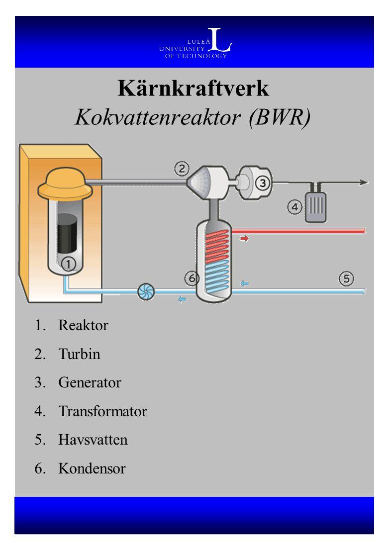Kärnkraftverk Kokvattenreaktor (BWR)