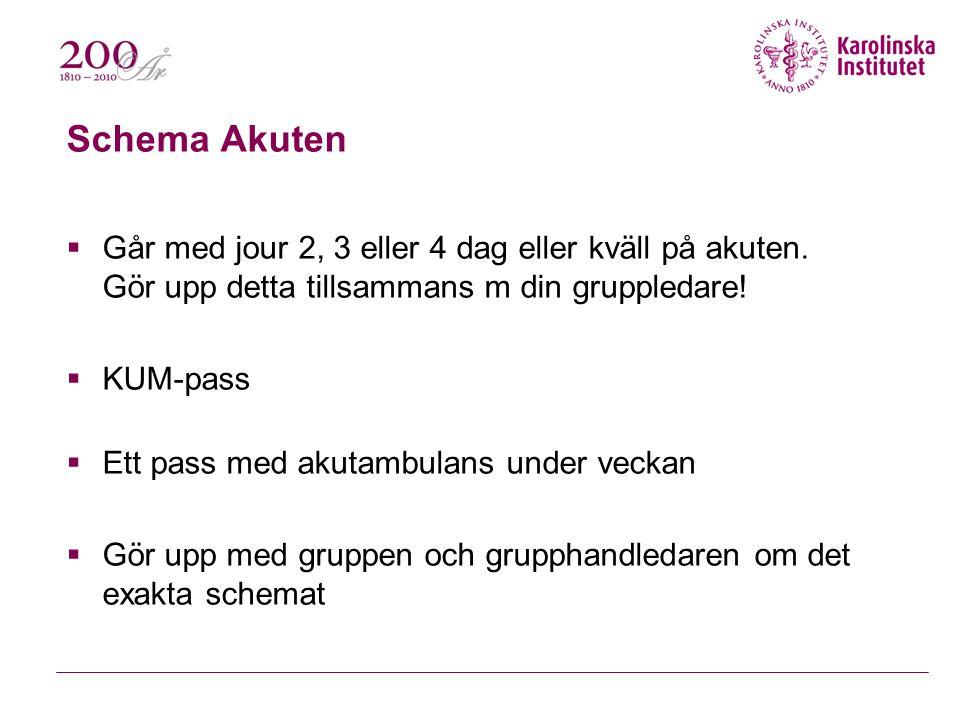 Schema Akuten Går med jour 2, 3 eller 4 dag eller kväll på akuten. Gör upp detta tillsammans m din gruppledare!
