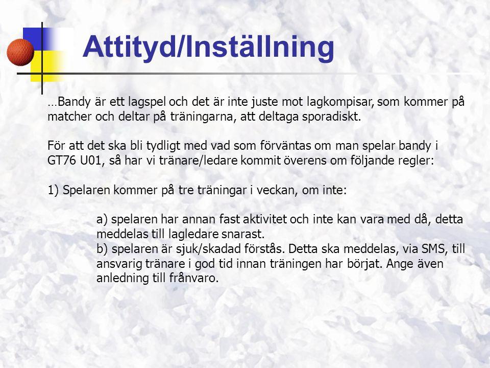 Attityd/Inställning