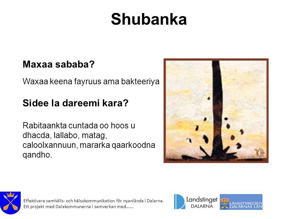 Shubanka Maxaa sababa Sidee la dareemi kara