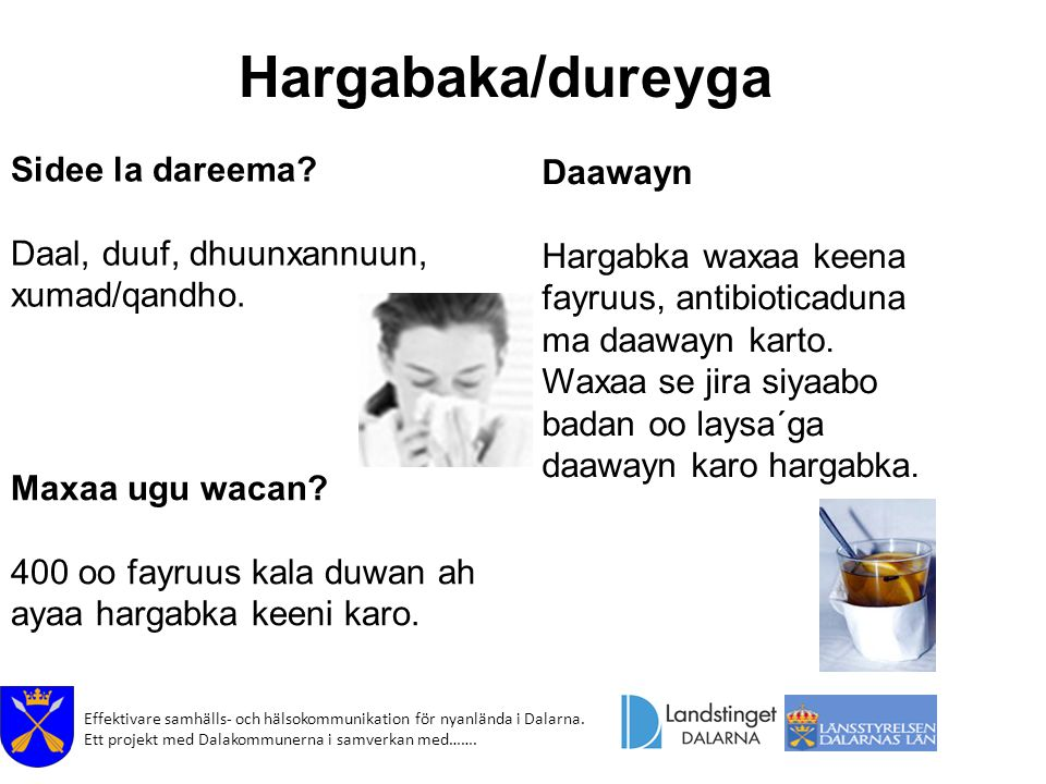 Hargabaka/dureyga Sidee la dareema Daawayn