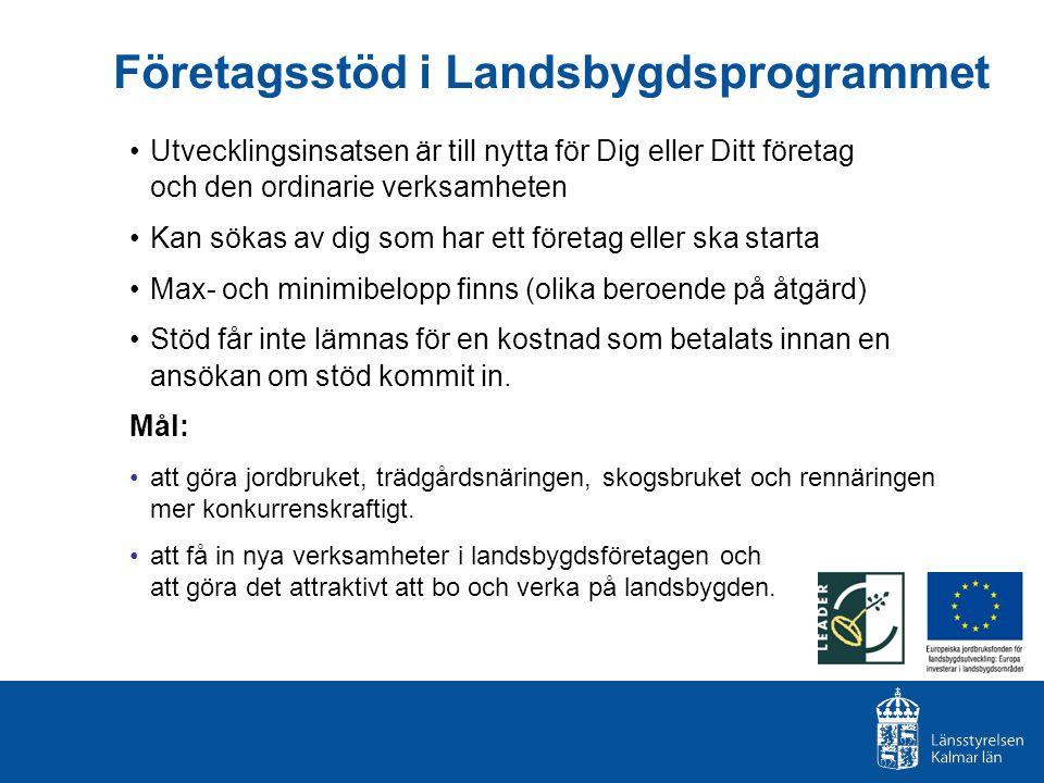 Företagsstöd i Landsbygdsprogrammet