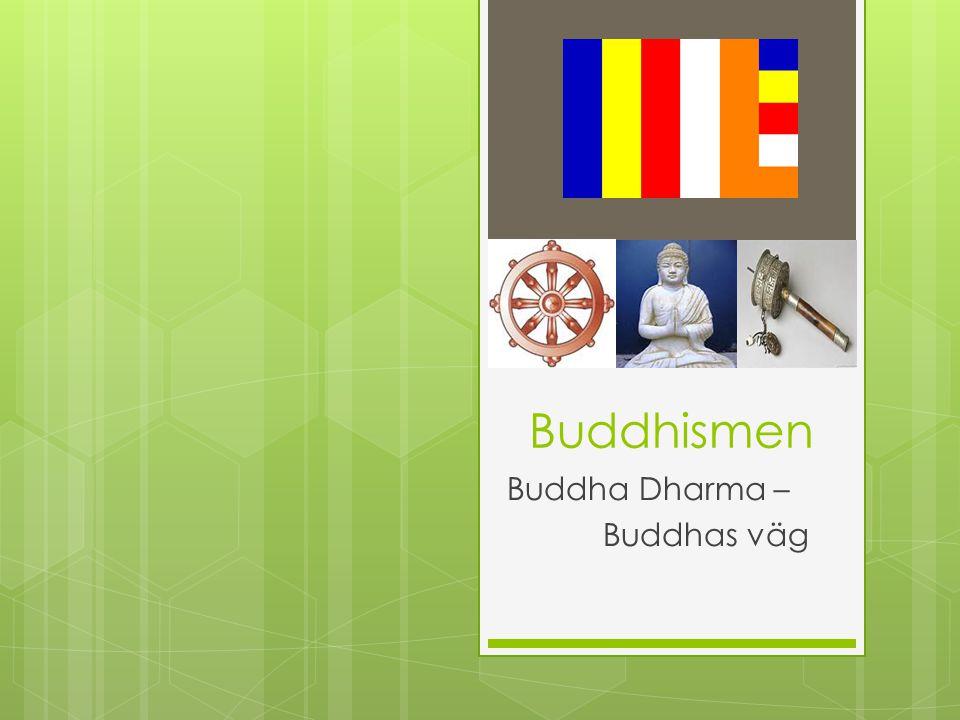 Buddha Dharma – Buddhas väg