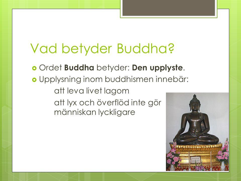 Vad betyder Buddha Ordet Buddha betyder: Den upplyste.