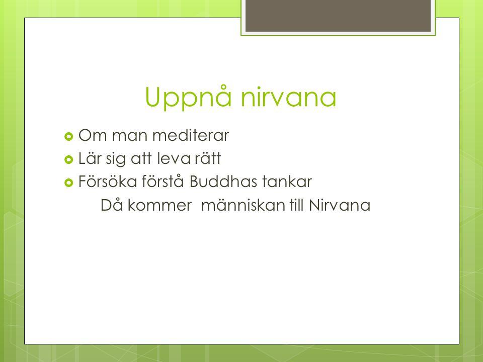 Då kommer människan till Nirvana