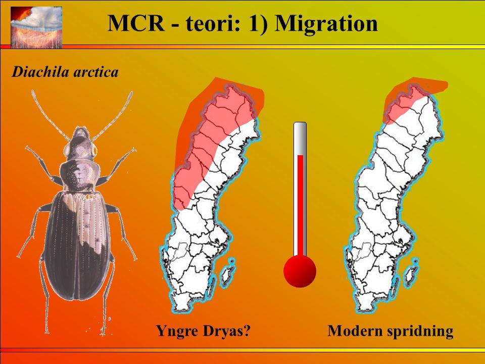 MCR - teori: 1) Migration