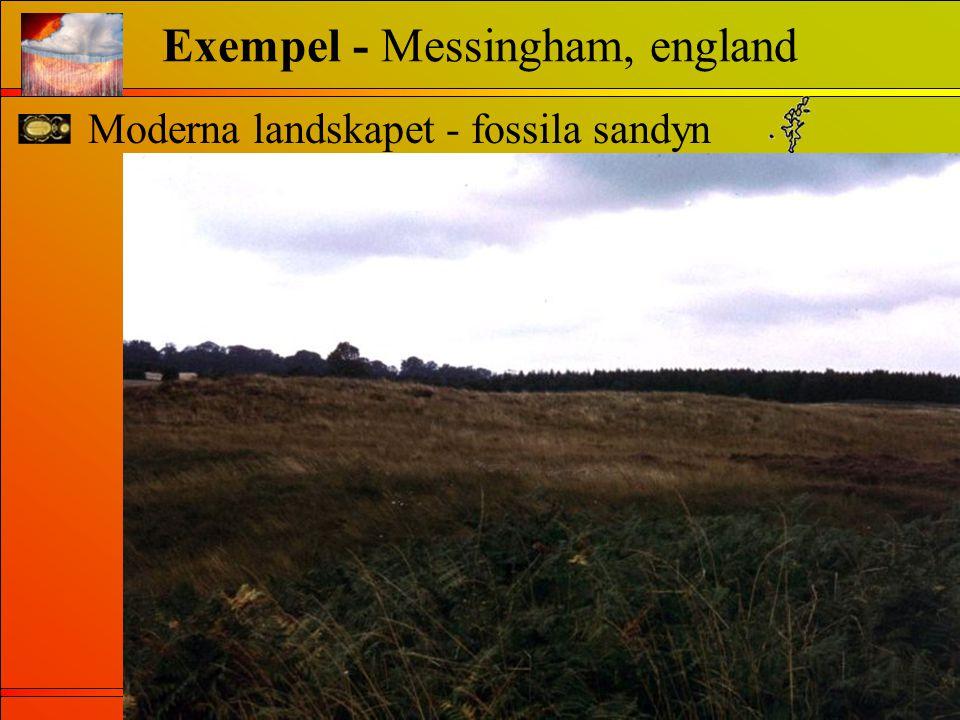 Exempel - Messingham, england