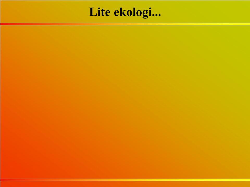 Lite ekologi...