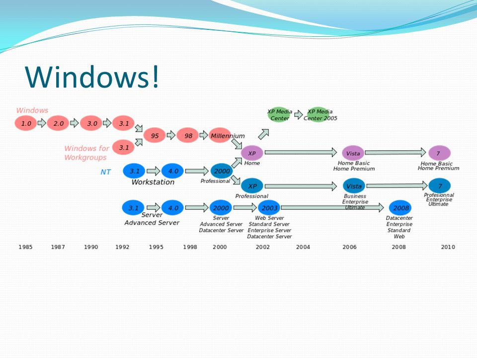 Windows!
