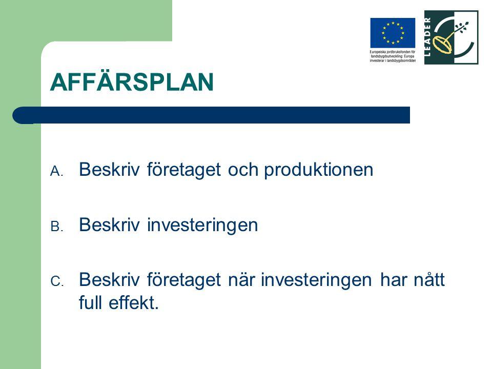 AFFÄRSPLAN Beskriv företaget och produktionen Beskriv investeringen