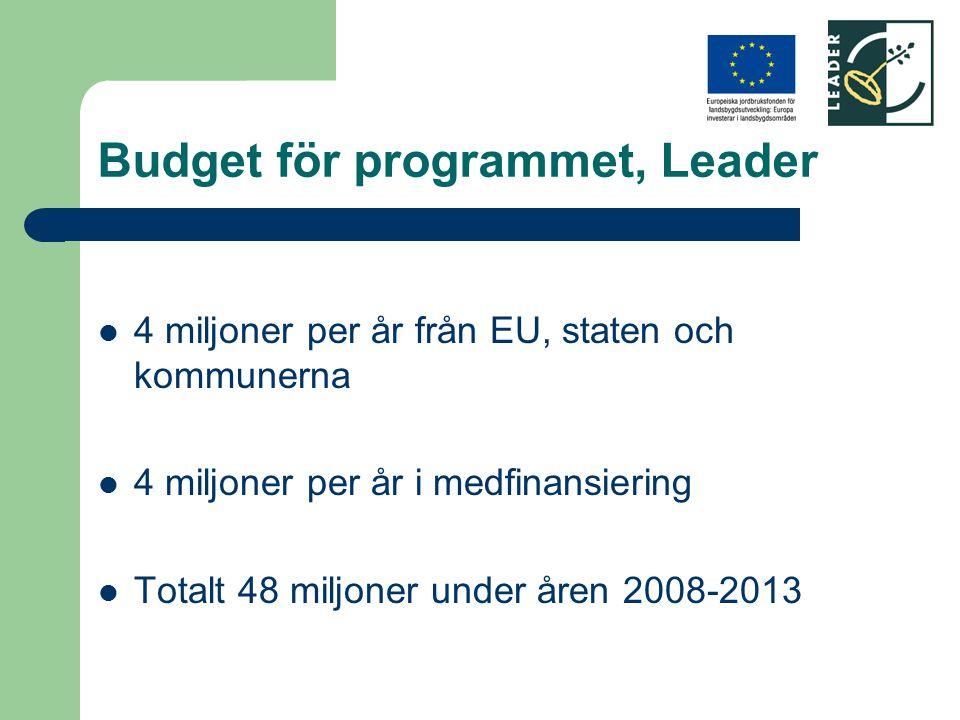 Budget för programmet, Leader