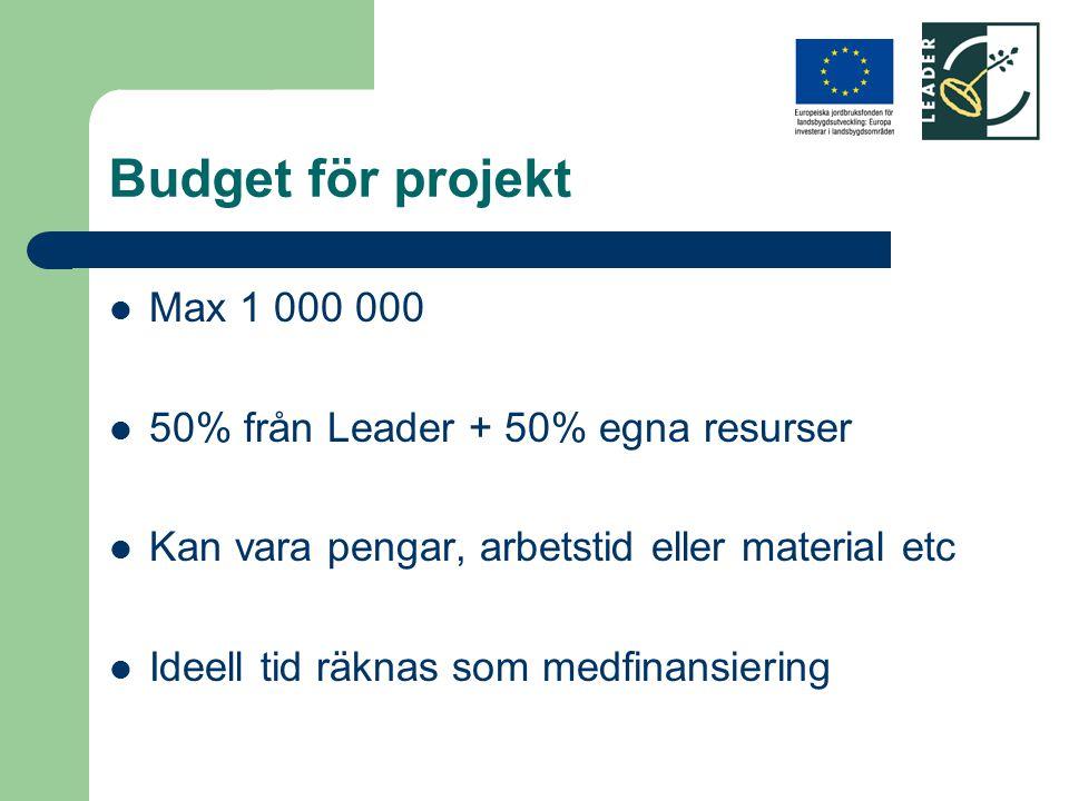 Budget för projekt Max 1 000 000 50% från Leader + 50% egna resurser