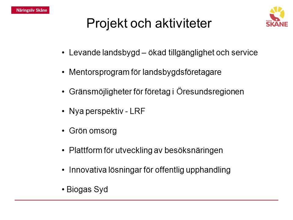 Projekt och aktiviteter