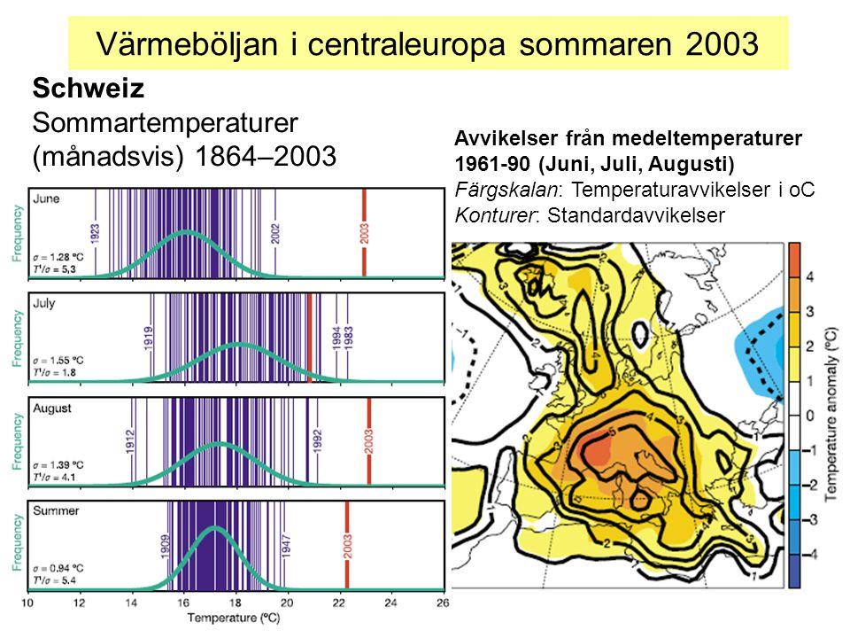 Värmeböljan i centraleuropa sommaren 2003