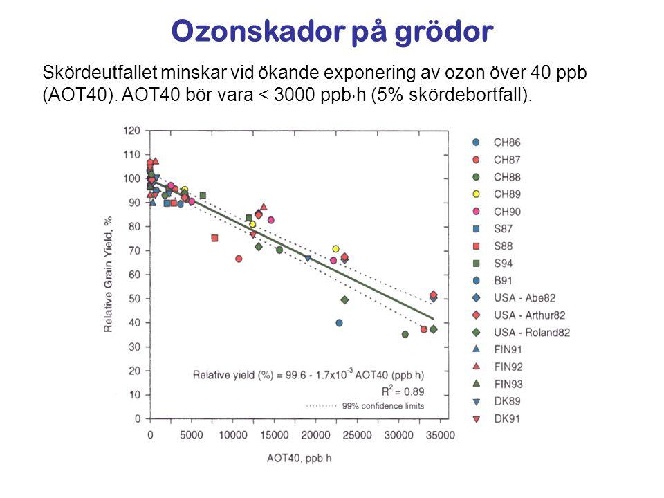 Ozonskador på grödor Skördeutfallet minskar vid ökande exponering av ozon över 40 ppb (AOT40).