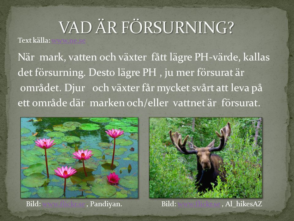 VAD ÄR FÖRSURNING Text källa: www.ne.se.